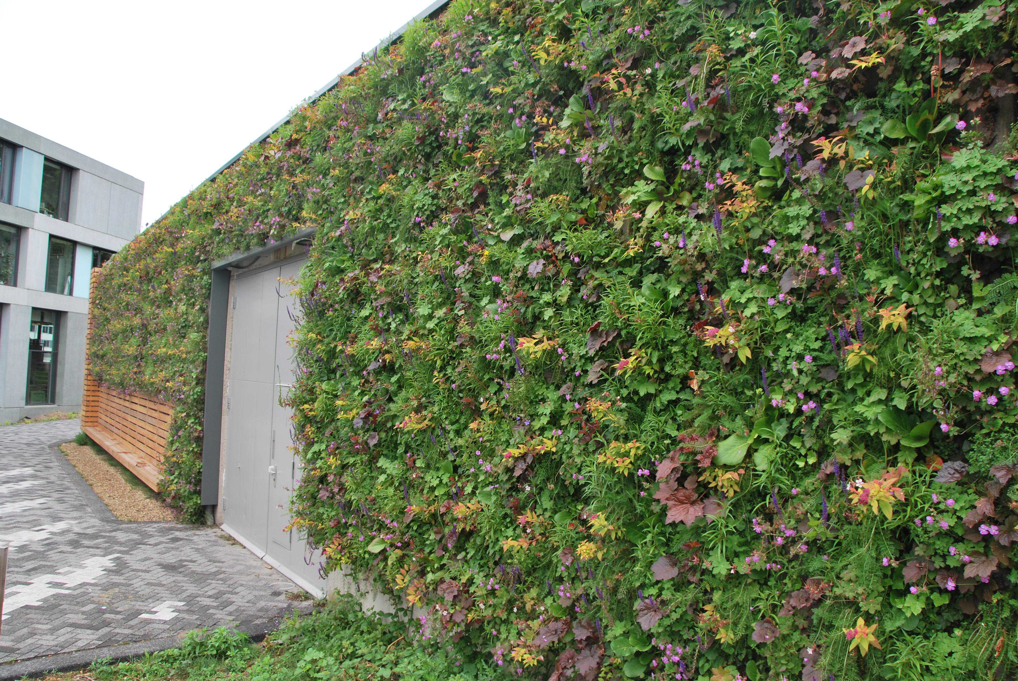 Groen gevel aanbouw huis voorbeelden for Verticale tuin systeem